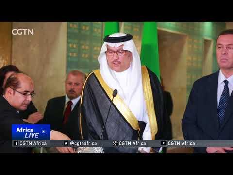 Arab League representatives hold tense meeting in Cairo