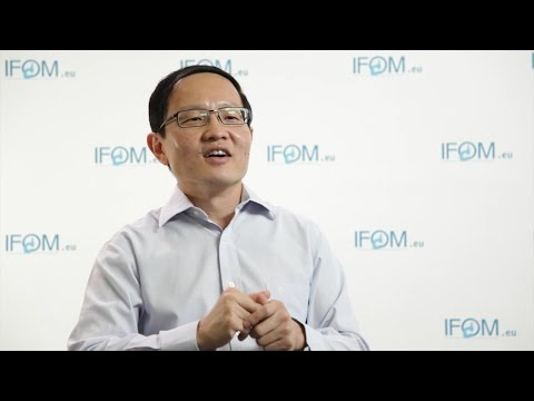 Interview with Chwee Teck (C.T.) Lim - MBI and Biomed Eng, NUS
