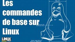 Les commandes de base sous Linux [FRANCAIS]
