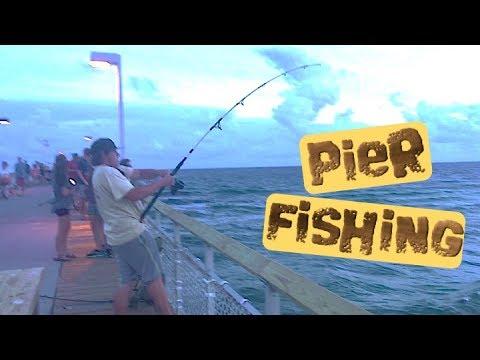 Okaloosa Island Pier Fishing || Huge Redfish And Blacktip Shark 🎣