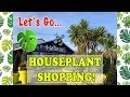 Come With Me To My Favourite Plant Shop! 💚🌿🌱