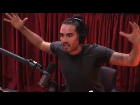 Joe Rogan and Russell Brand on the nature of consciousness