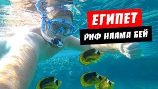 Египет 2021 Где лучший риф в Наама Бей Скудный подводный мир Отдых Шарм эль Шейх 2021