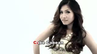 Video iMeyMey   Cabe Cabean Video Klip   lirik Full HD download MP3, 3GP, MP4, WEBM, AVI, FLV April 2018
