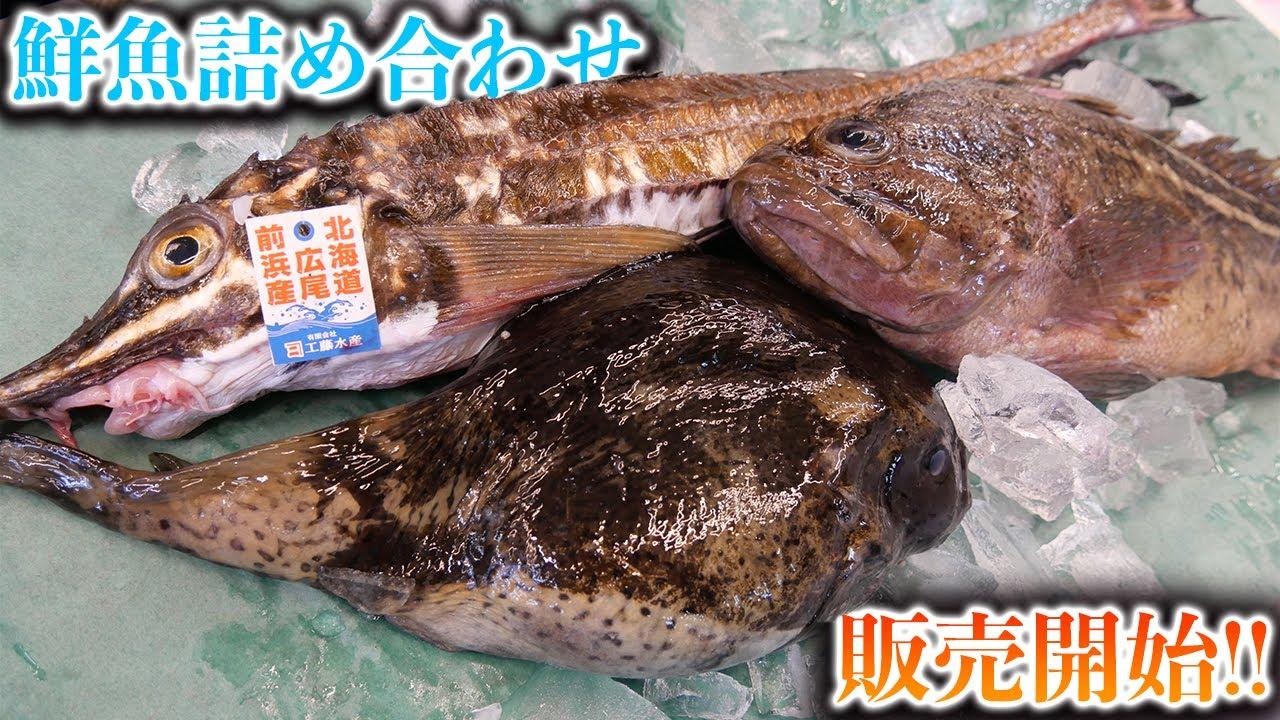 【活一鮮鮮魚BOX】販売開始!!