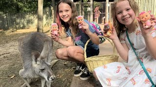 Taking our Cry Babies Magic Tears Dolls to the Zoo!