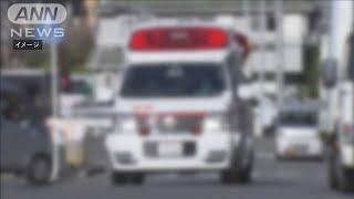 新型コロナ 感染者の救急搬送数が3月下旬から急増(20/04/20)
