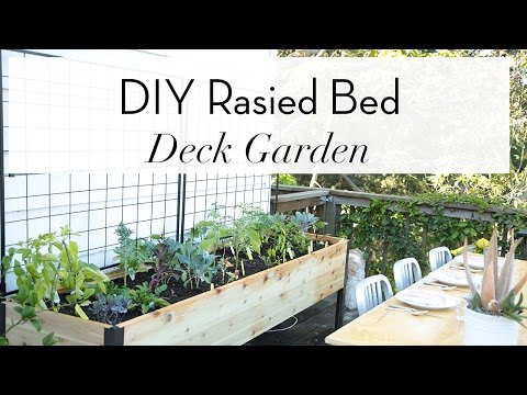 Easy DIY Raised Bed Garden  | Garden | Theodore Leaf