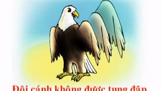 Video | CAU CHUYEN GA VA DAI BANG.flv | CAU CHUYEN GA VA DAI BANG.flv