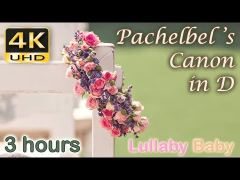 ✰ 3 HOURS ✰ Pachelbel CANON IN D ♫ 4K UHD ✰ PACHELBEL'S CANON ✰ Wedding Entrance, Relaxing Music ✰