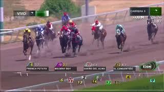Vidéo de la course PMU QUINQUEN