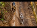 Visit to NANDANKANAN Zoo & Jungle Safari (February 2017)