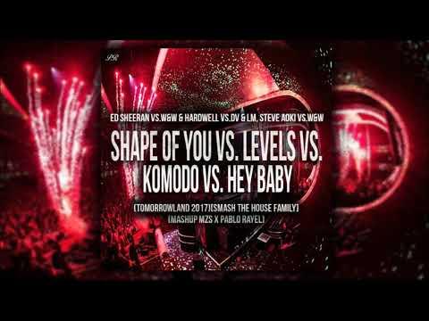 Shape of You Vs. Levels Vs. Komodo Vs. Hey Baby (DV & LM / TML '17)[Smash The House Family]