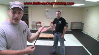 How To Handle A Light Line - Self Help Dog Training (k9-1.com)