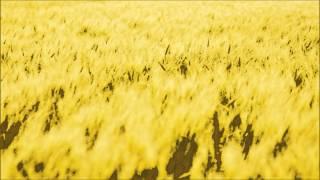金曜の夜、「風の谷のナウシカ」を観た後に衝動的に「ナウシカレクイエム」の♪らんらんらららんらんらん~の部分を作ってみたくなって、前...