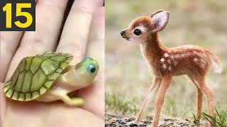 Top 15 Most CUTE Baby Animals