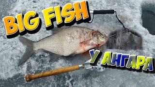 Крупный лещ Зимняя рыбалка Белоярское водохранилище Ангар