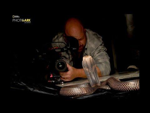 Once snake bitten, but not camera shy