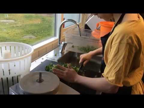 Nymarkskolen - žáci Připravují Oběd