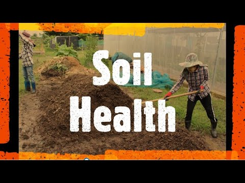 Why is Soil Organic Matter (SOM) Important? (Intro to Soil Science Part 4)
