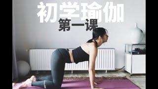 初学瑜伽第一课,零基础瑜伽入门系列 |Allison瑜伽 - Yoga for beginners, First yoga class