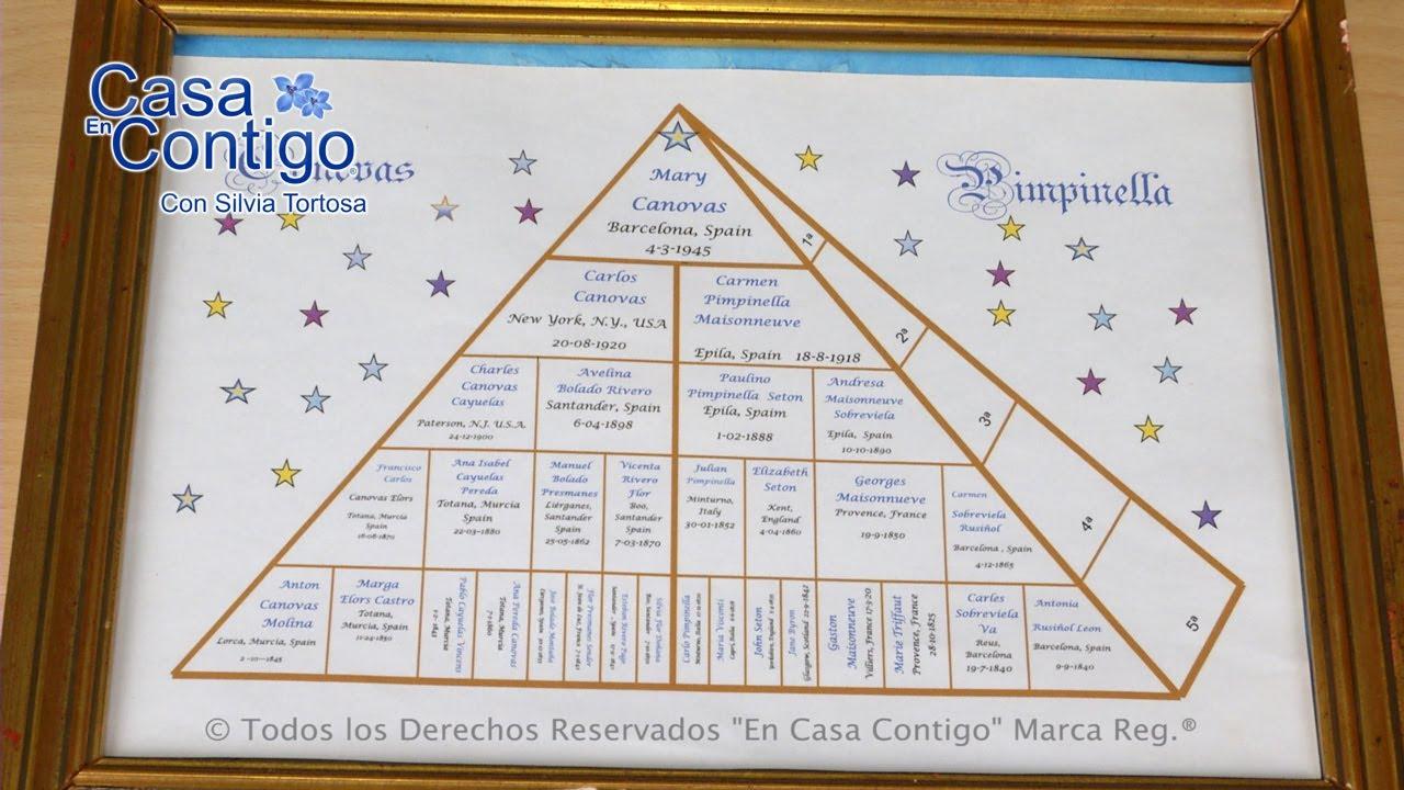 Arbol de Familia Piramide Genealógico Exclusivo de En Casa Contigo ...