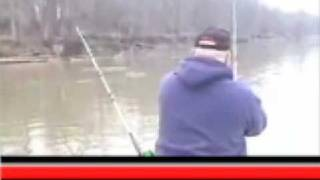 Blue Catfish Over 60 Pounds On Skip Jack