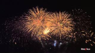 Paris 2013 Feu d'artifice - Tour Eiffel Quatorze Juillet Fireworks - 14 July - Complete show