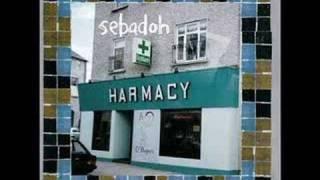 Sebadoh - Too pure