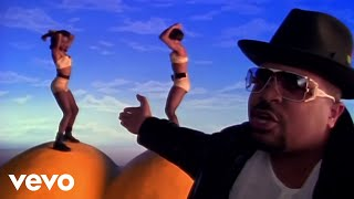 sir-mix-a-lot---baby-got-back