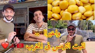 اخيرااا ***  لقيت الترمس فى المغرب 🇲🇦 💃🏻❤️💪🏻 تعرف على فوائده مهمه جدا