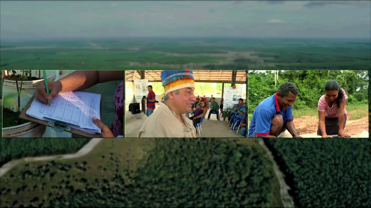 Roraima: Dreaming In Green