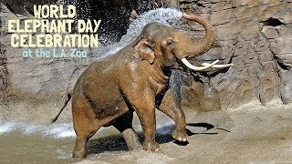 L.A. Zoo World Elephant Day 2017