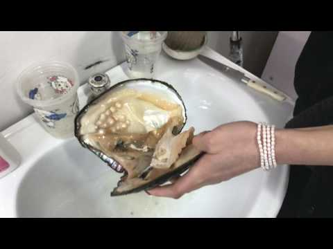 Opening an oyster full of pearls