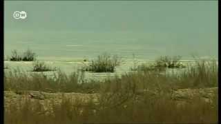 Германия готова помочь спасти Аральское море(Германия готова помочь Узбекистану и Казахстану новейшими технологиями. Нехватка воды в этих странах все..., 2012-03-09T12:41:51.000Z)