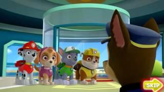 Paw Patrol Academy   Marshall's Fire Rescue Challenge   Cartoon Movie Game 2015 HD Nick JR