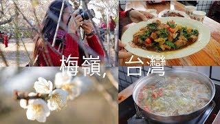 Meiling, Tainan, Taiwan Vlog! 梅嶺,台南,台灣,十年來最美麗的梅花盛開 !