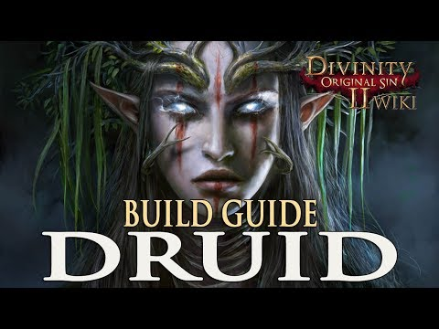Divinity Original Sin 2 Builds - Druid (Mage/Summoner)