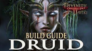 Divinity Original Sin 2 Builds - Druid (Mage/Summoner)