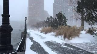 Blizzard of 2016 - NYC 2