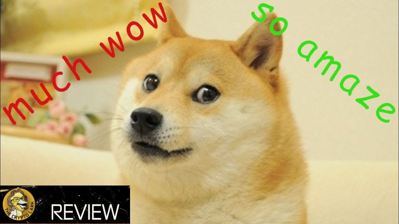 Dogecoin - The New Paradigm of Internet Money - Cryptocurrency of the Future