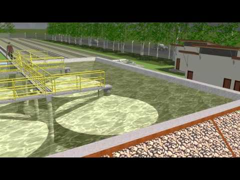 Algae Sewage Treatment Plant 3D