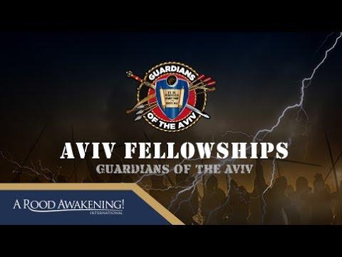 Aviv Fellowships | Michael Rood