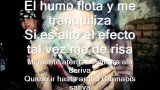 MARIHUANA- CARTEL DE SANTA