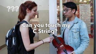 Touch My Viola CHALLENGE