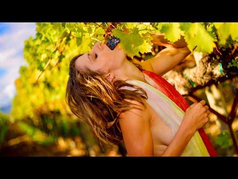 Napa & Sonoma Valley Aerials - California Vineyards