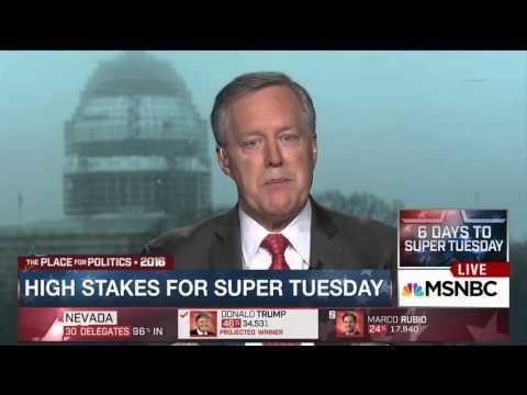 Mark Meadows on MSNBC   February 24, 2016   Ted Cruz for President