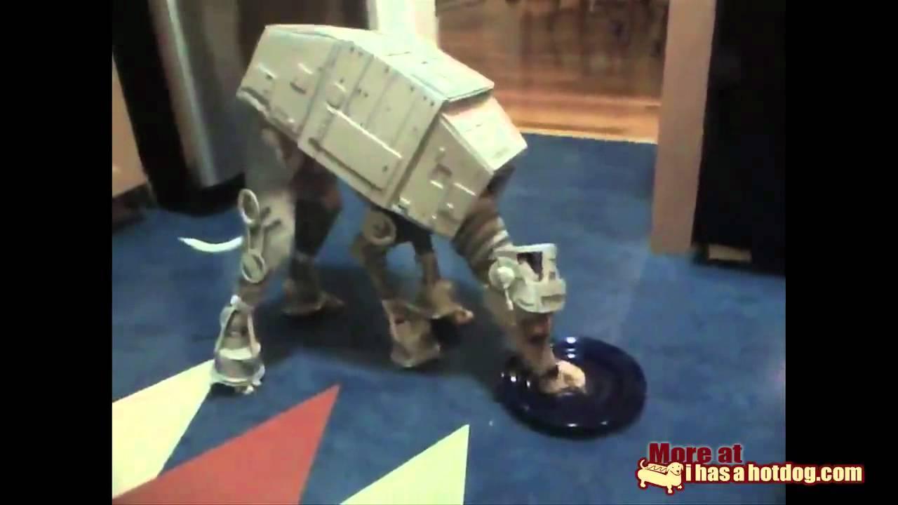 AT-AT Dog Star Wars - YouTube