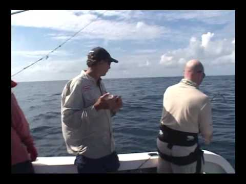 Marlin Fishing - Reel Breaks
