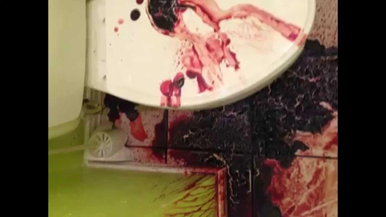 denver hoarding cleanup clutter cleaning pack rat homes biohazard youtube. Black Bedroom Furniture Sets. Home Design Ideas